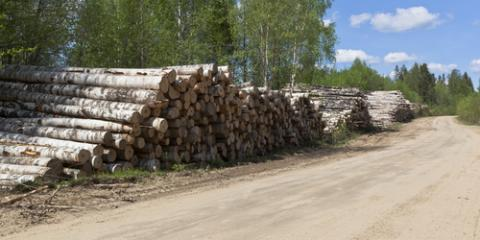 Attributes of Veneer Logs for Central Hardwood Species, Middlefield, Ohio