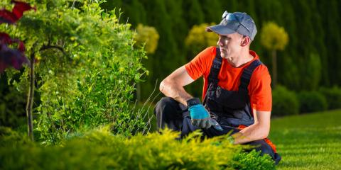 How Does Landscaping Affect a Home's Value?, Nicholasville, Kentucky