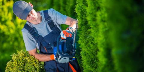 3 Benefits of Working With a Landscaping Company, Lincoln, Nebraska
