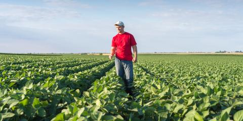 How to Prevent Hearing Loss When Working on a Farm , Kerrville, Texas