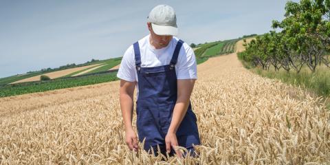 Grain Marketing 101: What Are Commodity Funds?, Seward, Nebraska