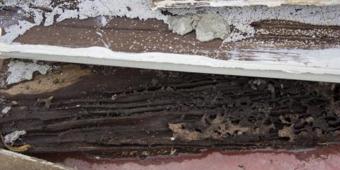How to Detect Termite Infestation or Damage in Your Home, McGehee, Arkansas