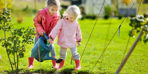 When Should You Fertilize Your Lawn for the Winter?, Berrett, Maryland