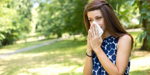 A Guide to Allergies, Bronx, New York