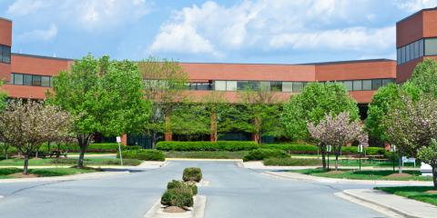 3 Reasons to Choose Commercial Tree Services for Summer, St. Charles, Missouri