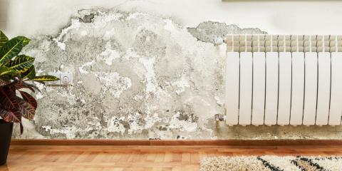 3 Signs Your Home Has Water Damage, Dothan, Alabama