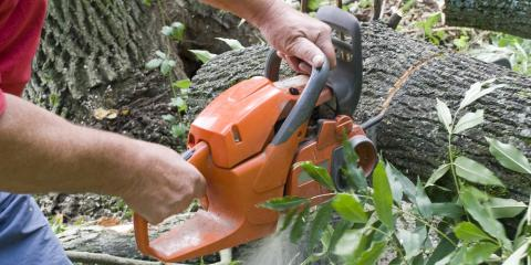 3 Tools a Professional Tree Service Uses to Groom Your Yard, Kalispell, Montana