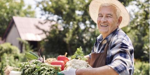 4 Essential Gardening Supplies for Your Vegetable Garden, Robertsdale, Alabama