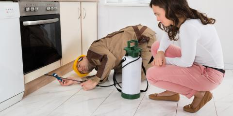 Pest Management Experts Offer 3 Tips to Keep Pests Out of Your Home, Roxbury, New Jersey