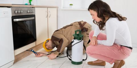 When Is Pest Control Necessary? Learn More From the Professionals, Bethalto, Illinois