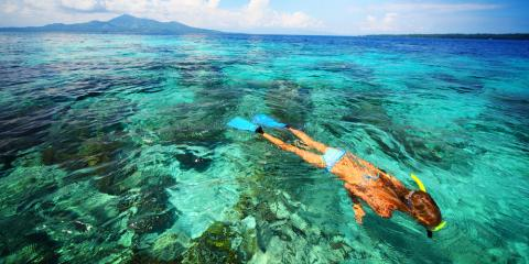 Snorkeling Tour With Honu: What to Know About Swimming With Hawaiian Green Sea Turtles , Ewa, Hawaii