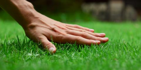 What Kind of Care Do Lawns Need in September?, Catawba Springs, North Carolina