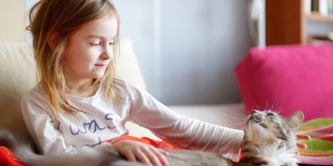 How to Guide Your Child Through the Process of Pet Euthanasia, Atlanta, Georgia