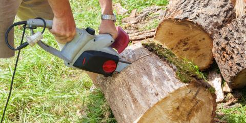 3 Ways to Repurpose Wood After Tree Removal, Kalispell, Montana