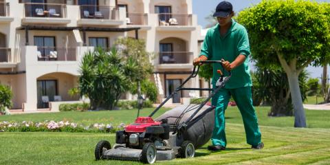 3 Things That Happen To Your Lawn That You Shouldn't Ignore, Ballwin, Missouri