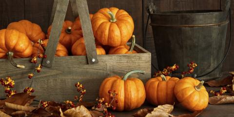 Get Excited About These 4 Fall Activities!, Abilene, Texas