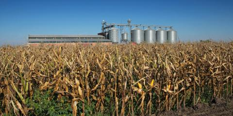 5 Safety Tips for Harvesting With Grain Dryers, Platteville, Wisconsin