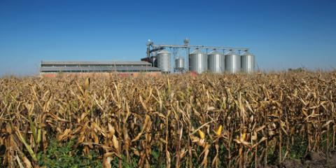 4 Factors to Consider Before Picking a Grain Dryer, Platteville, Wisconsin