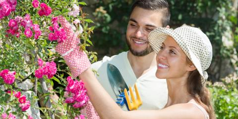 How to Keep Your Flower Beds From Wilting in the Summer Heat , Hilo, Hawaii
