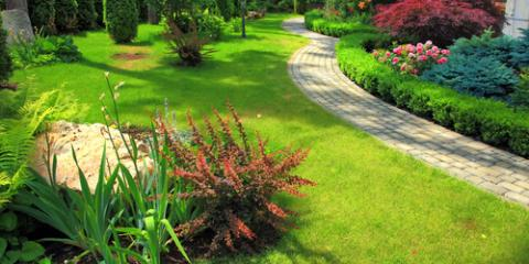What Can Be Planted Near a Septic System?, Waterloo, Illinois