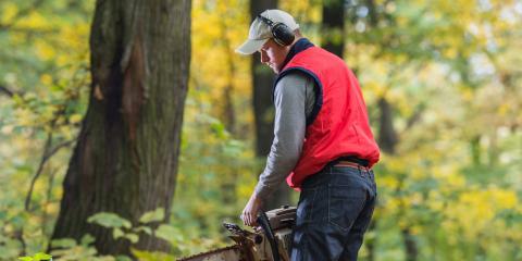 3 Ways to Prepare for Tree Removal, Dayton, Ohio