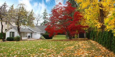 Do's & Don'ts of Lawn Care in the Fall, Cromwell, Connecticut