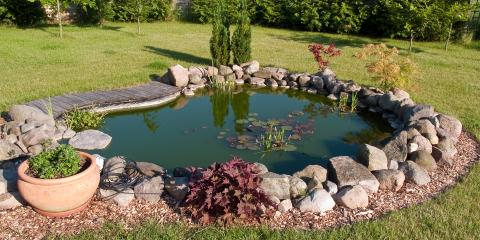 A DIY-er's Guide to Building a Fish Pond, Lincoln, Nebraska