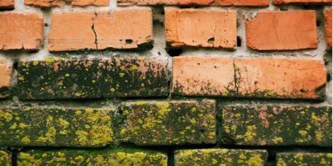 3 Tips for Dealing With Mold on Bricks, Wethersfield, Connecticut