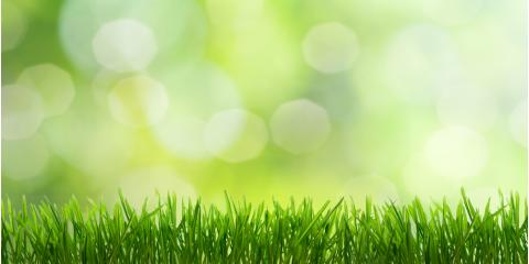 Top 3 Lawn Maintenance Tips to Keep Your Yard Green This Summer, Columbia, Missouri