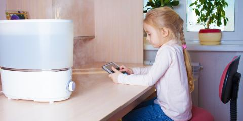 Why You Should Use a Humidifier in the Winter, Burlington, Kentucky