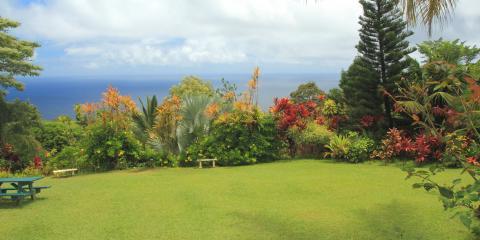 How to Care for Your Grass During Hawaii's Rainy Season, Wahiawa, Hawaii