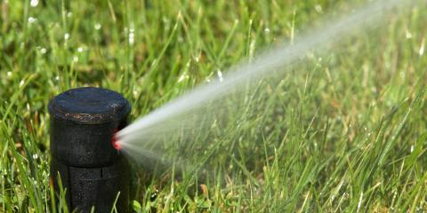 4 Signs Your Sprinkler System Has a Leak, Waterford, Connecticut