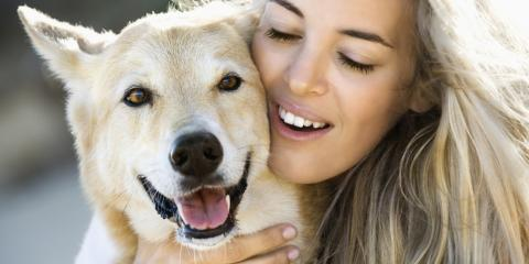 Should My Older Dog Eat Special Food?, Hilo, Hawaii