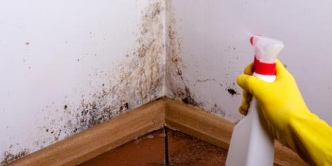 A Cincinnati Home Inspector on the Difference Between Mold & Rust, Fairfax, Ohio