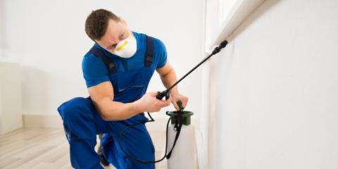 4 Reasons to Choose Professional Residential Pest Control Over DIY, 2, Maryland
