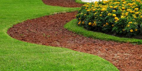 How to Determine if You Need Lawn Grading, St. Peters, Missouri
