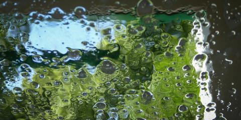 Premier Brooklyn Hand Wash on the Benefits of Regular Car Detailing , Brooklyn, New York