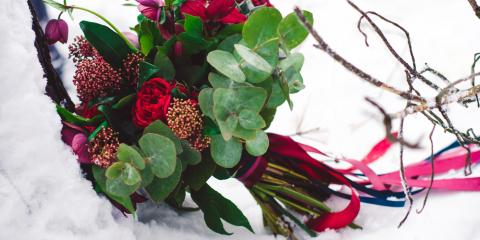 End-of-Winter Flower Delivery: Buying & Caring Guide, Hamden, Connecticut