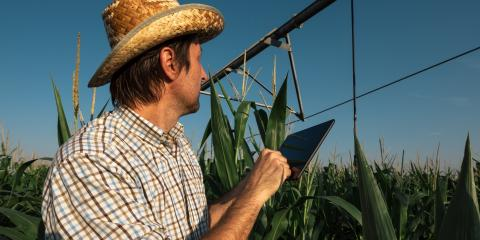 Should You Buy or Lease Irrigation Equipment? , Dimmitt, Texas