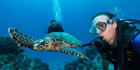 Take Your Hawaii Vacation to the Next Level With a Dive Tour, Honolulu, Hawaii
