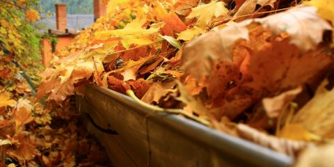 Metal Roofing Suppliers Provide 3 Crucial Tips for Cleaning Your Gutters This Fall, Dothan, Alabama