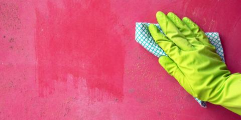 Do You Have Mold at Home? Here's What to Do , Foley, Alabama