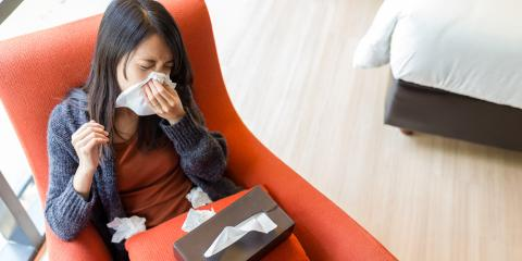 Have Seasonal Allergies? Here Are 3 Tips to Relieve the Symptoms, High Point, North Carolina