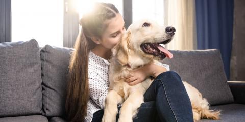 4 Beautiful Quotes About Losing a Dog, Atlanta, Georgia