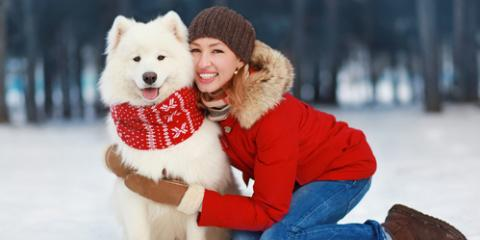 Get Pups Holiday-Ready With Discounts on Dog Collars & More!, Oyster Bay, New York