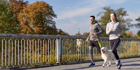 3 Reasons Your Dog Needs Daily Exercise, Alexandria, Virginia