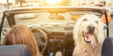 What to Consider When Buying Car Insurance, Blountstown, Florida
