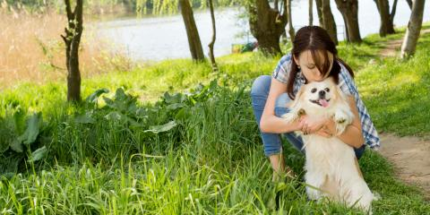 5 Fun & Safe Outdoor Activities for Dogs & Owners, High Point, North Carolina