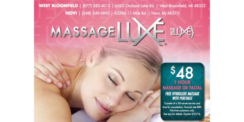 Enjoy a Revitalizing Massage or Facial in Novi for $48!, Novi, Michigan
