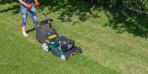 3 Types of Lawn Mowers to Choose From, Dothan, Alabama